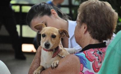 Goiânia terá campanha de vacinação gratuita contra raiva neste sábado