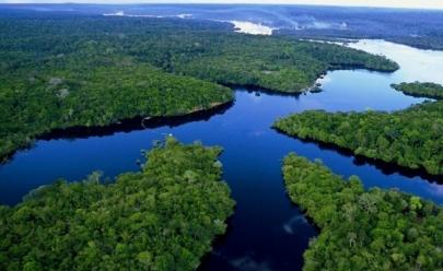 Noruega irá doar R$ 270 milhões para o Fundo Amazônia