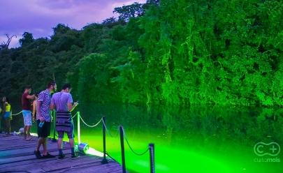 Jardim Botânico será sede da terceira edição do PicniK em Goiânia