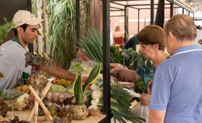 Mercadinho do Brasília traz programação gratuita com feira orgânica oficinas, massagens e música