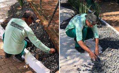 Presos do regime semiaberto começam a trabalhar na limpeza do Bosque dos Buritis em Goiânia
