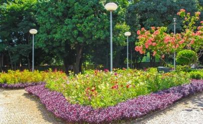 Praça Paulo Britto no Setor Oeste fez da tragédia um belo e charmoso lugar de Goiânia