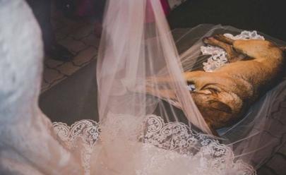 Vira-lata invade cerimônia de casamento, cochila no vestido da noiva e tem final surpreendente