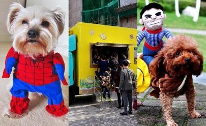 FestPet Celebrate acontece neste sábado em Goiânia unindo diversão e solidariedade