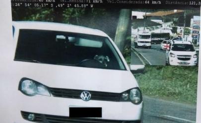 Radar flagra excesso de velocidade e revela cachorro na direção do veículo