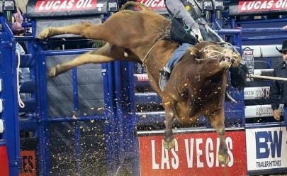 PBR, maior competição de montaria em touro do mundo, começa hoje em Goiânia, no SGPA Rodeio Festival