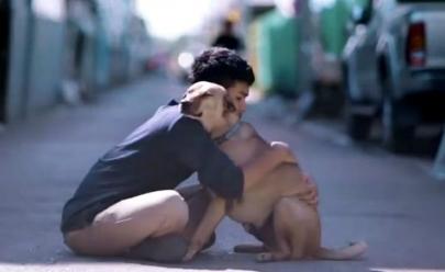 Jovem faz vídeo mostrando reação de cães de rua ao receberem um abraço e resultado viraliza na internet