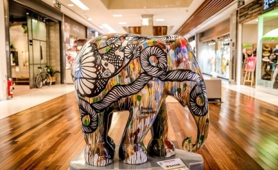 Exposição famosa chega a Brasília e alerta para o perigo da extinção de elefantes