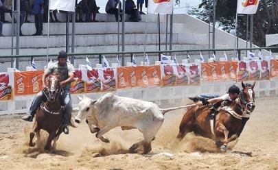 Vaquejada é proibida no Ceará pelo Supremo Tribunal Federal