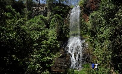 Parque do Pau Furado vai ganhar revitalização com iluminação, mapas das trilhas e reforço na segurança