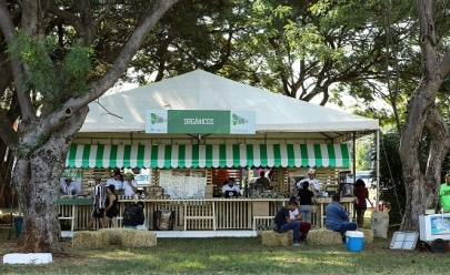 Eixão Agro: evento gratuito reúne produtores agrícolas em Brasília
