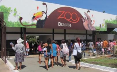 Zoológico de Brasília celebra aniversário com programação especial