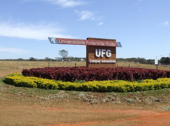 UFG oferece mais de 400 vagas em cursos superiores e gratuitos